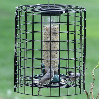"Birds Choice Clever Clean Tube Feeder 12"" with Squirrel Cage"
