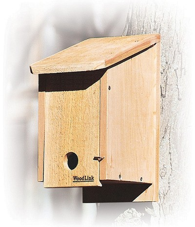 Audubon Winter Roosting Box